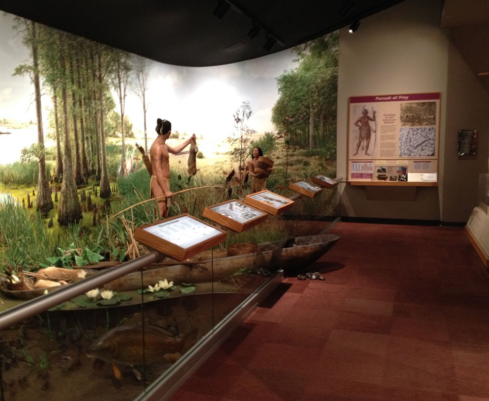 Diorama (left) and Pursuit of Prey exhibit (far end)